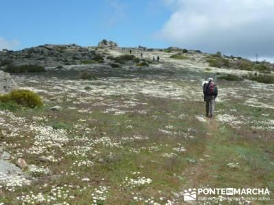 Ruta de Senderismo - Altos del Hontanar; el tranco la pedriza; la garganta del cares